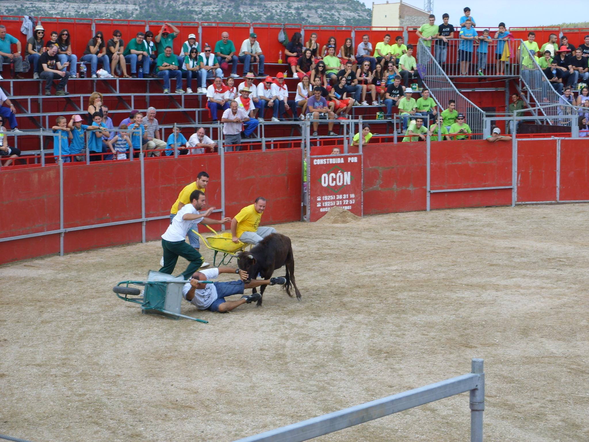Fiestas de Astudillo 2011 16