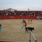 Fiestas de Astudillo 2011 21