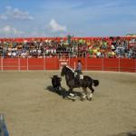 Fiestas de Astudillo 2011 27
