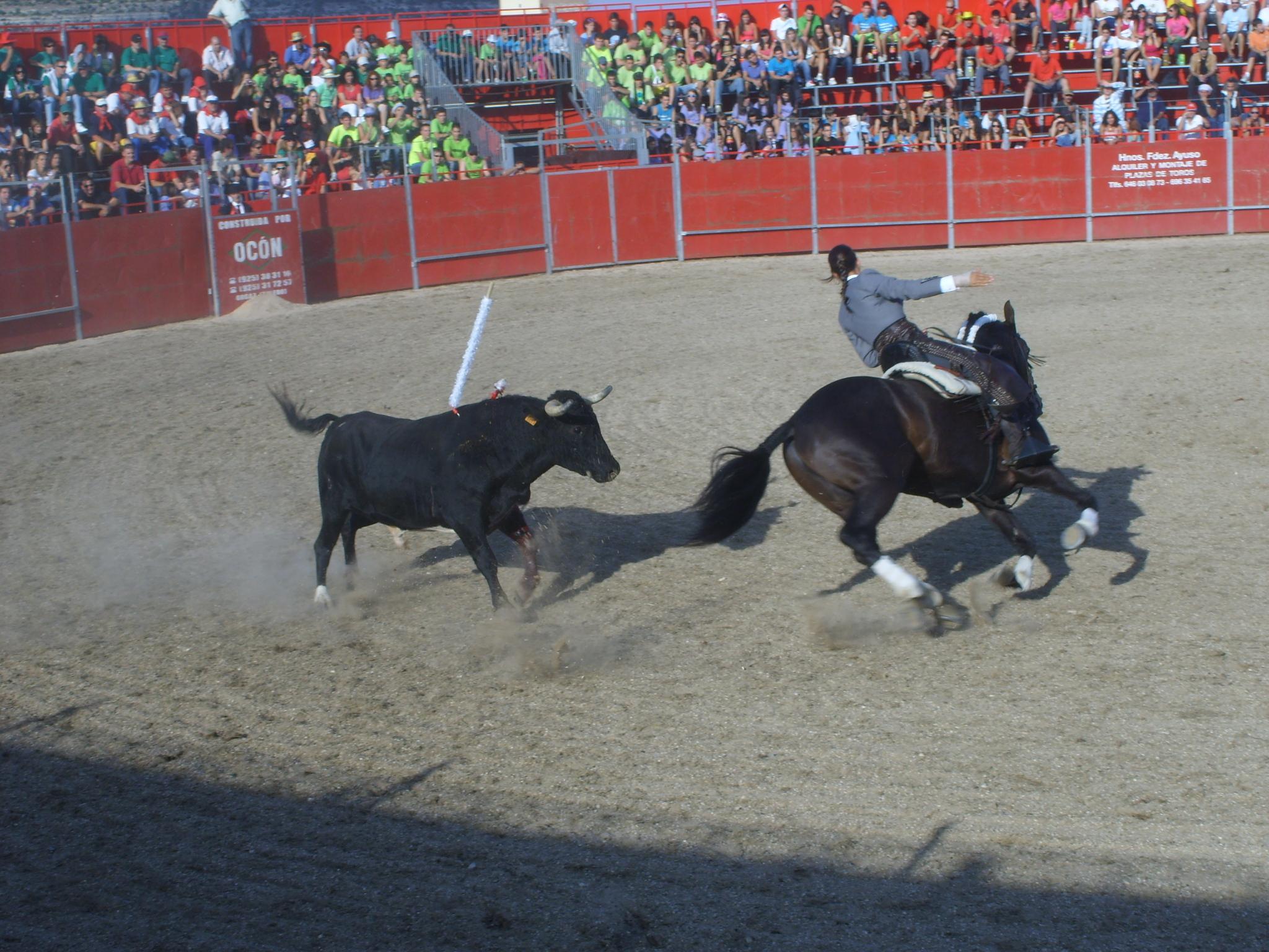 Fiestas de Astudillo 2011 28