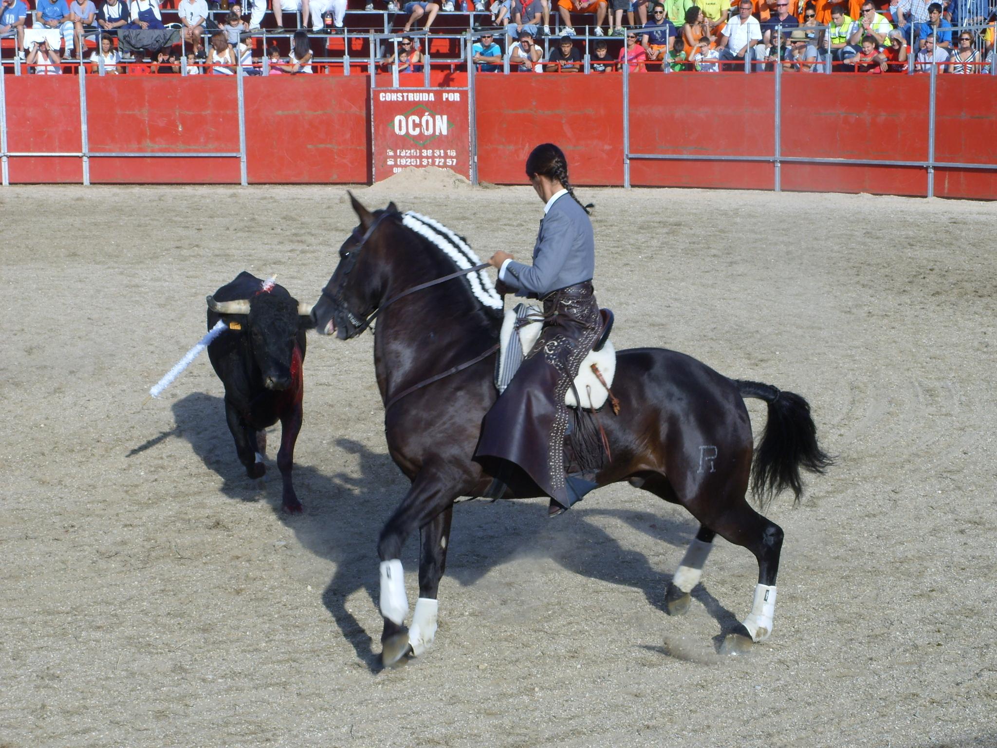 Fiestas de Astudillo 2011 29