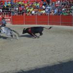 Fiestas de Astudillo 2011 31
