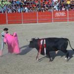 Fiestas de Astudillo 2011 32