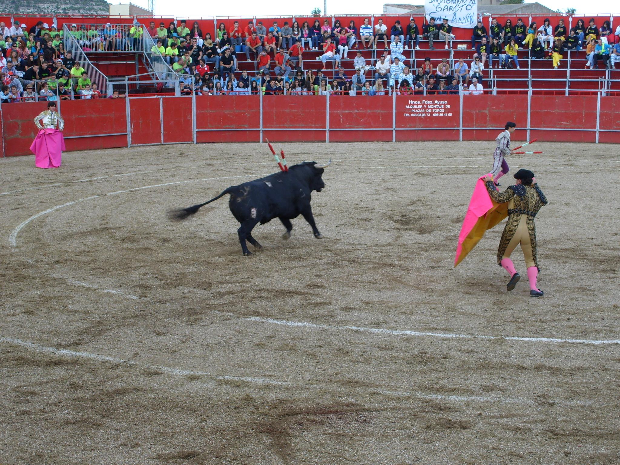 Fiestas de Astudillo 2011 50