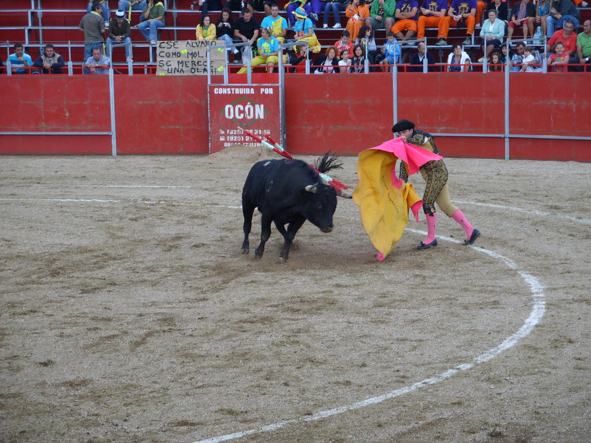 Fiestas de Astudillo 2011 51