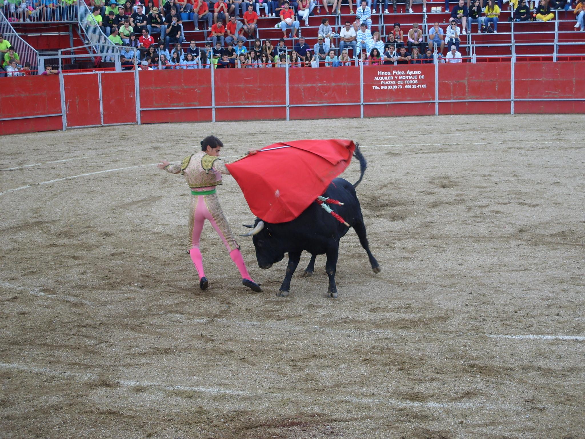 Fiestas de Astudillo 2011 53