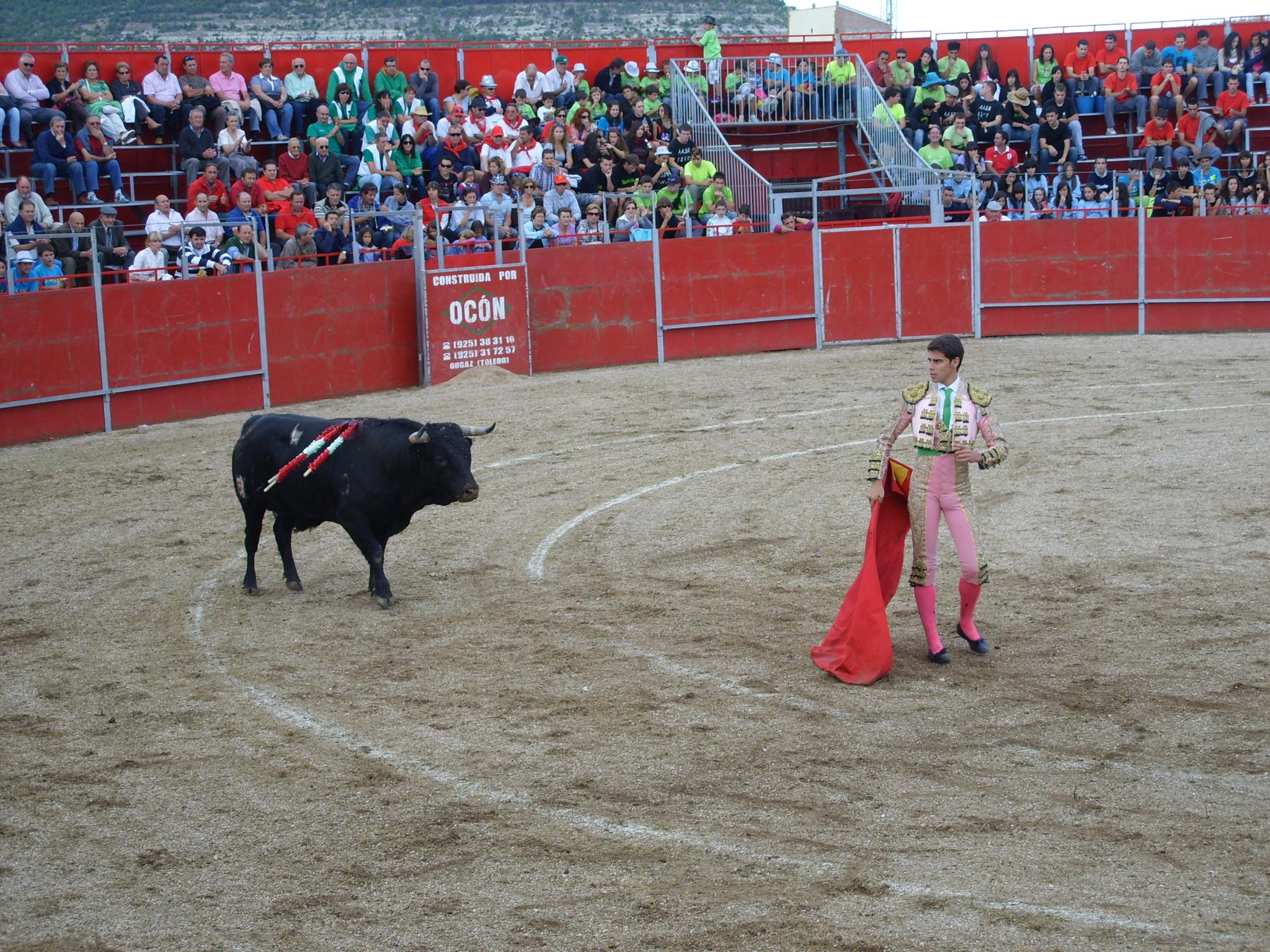 Fiestas de Astudillo 2011 54