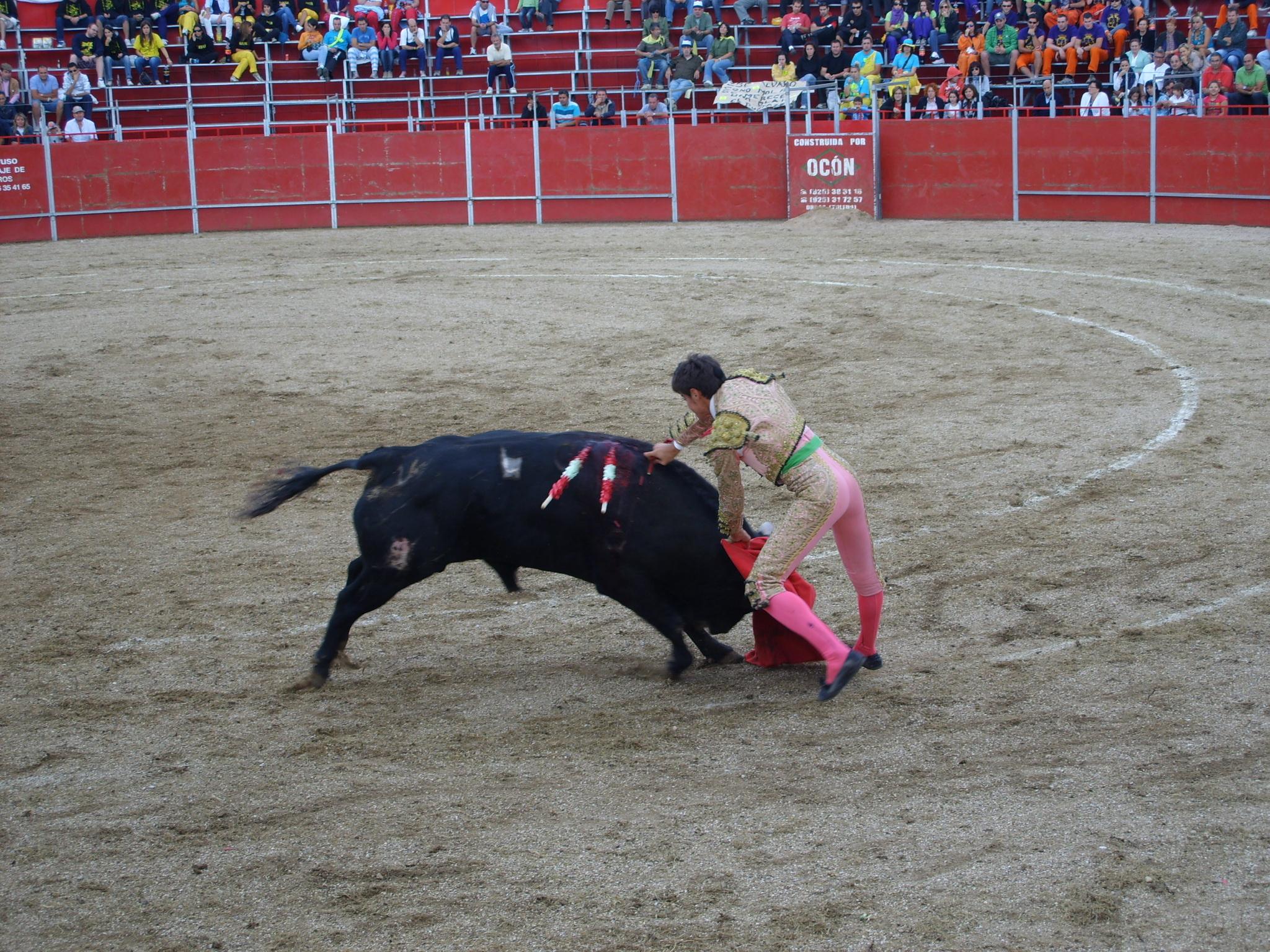 Fiestas de Astudillo 2011 57