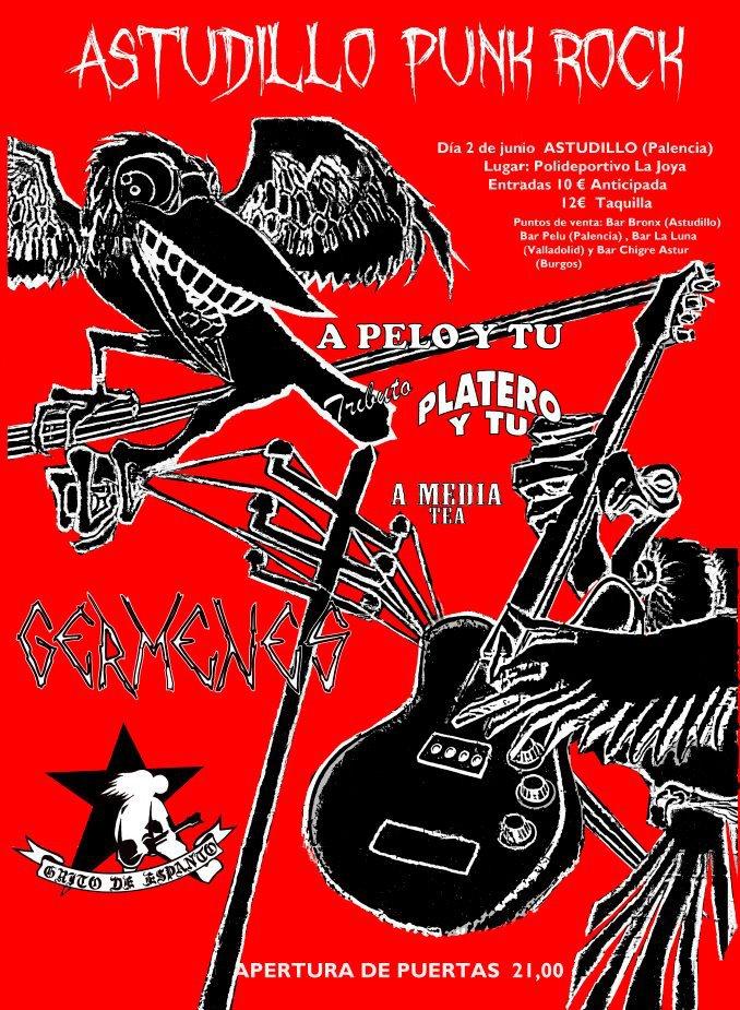 Concierto Música Punk Rock